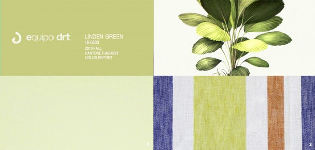 EquipoDRT-linden-green-pantone-color-report-fall-2013